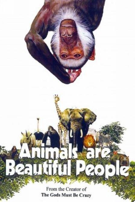 《可爱的动物》正片—南非—电影—优酷网