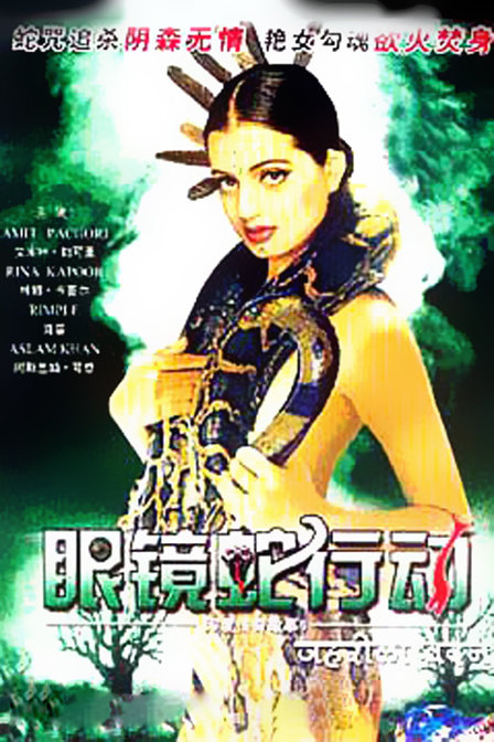 《印度传奇故事6之眼镜蛇行动》正片—印度—电影—网