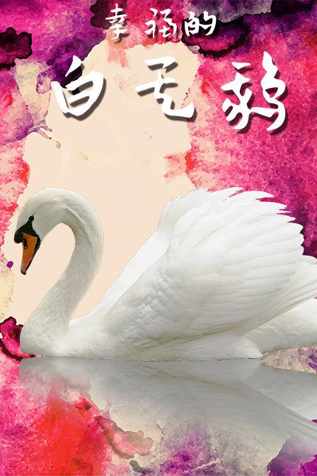 幸福的白天鹅