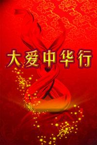 大爱中华行 2011