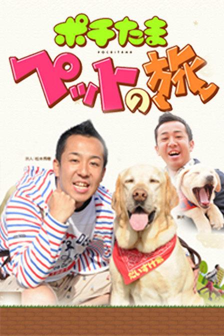 寵物當家之旅 2011'','687