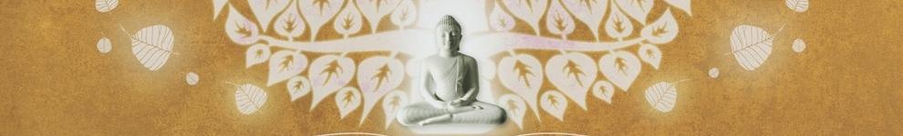 中华原始佛教 banner