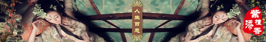 北派说书人 banner