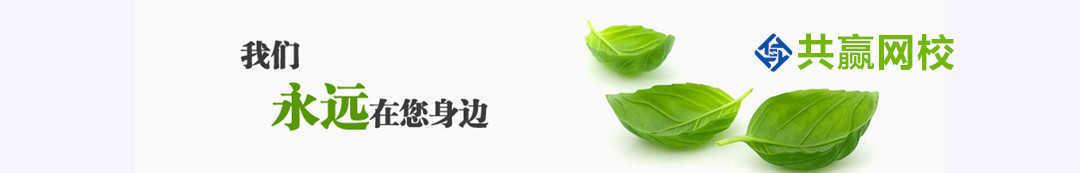 共赢网校 banner