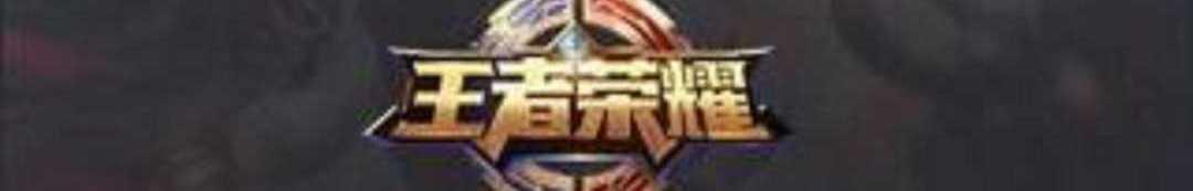 LSF-落木 banner