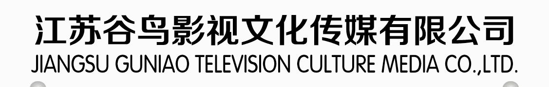 搜城纪影视文化 banner