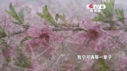 央八新剧!《在桃花盛开的地方》7月21日开播
