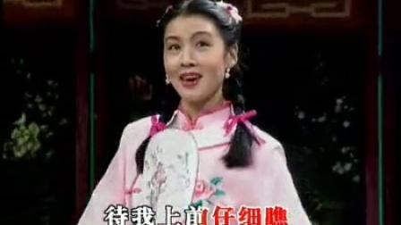 黃梅戲經典唱段00首之《女駙馬》(手提羊毫)徐君