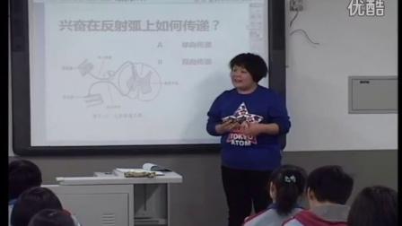 第五屆電子白板大賽《神經調節》(浙教版生物高二,北京市西城外國語學校:潘寧)