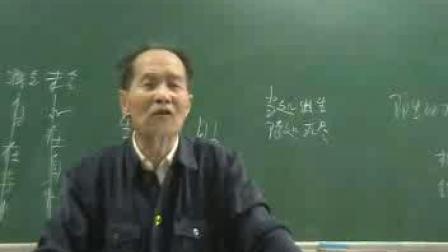 摩诃止观 117 沈仁岩(天台宗佛学院沈老师)20070707