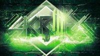 Skrillex - In For the Kill - La Roux Remix [HD]
