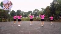 张林冰广场舞113 DJ自由舞 16步健身舞 含分解教学_高清