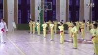 人教版小學體育五年級下冊《少年拳》教學視頻