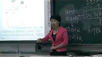 高三政治優質課實錄《文化創新的途徑》人教版_李老師